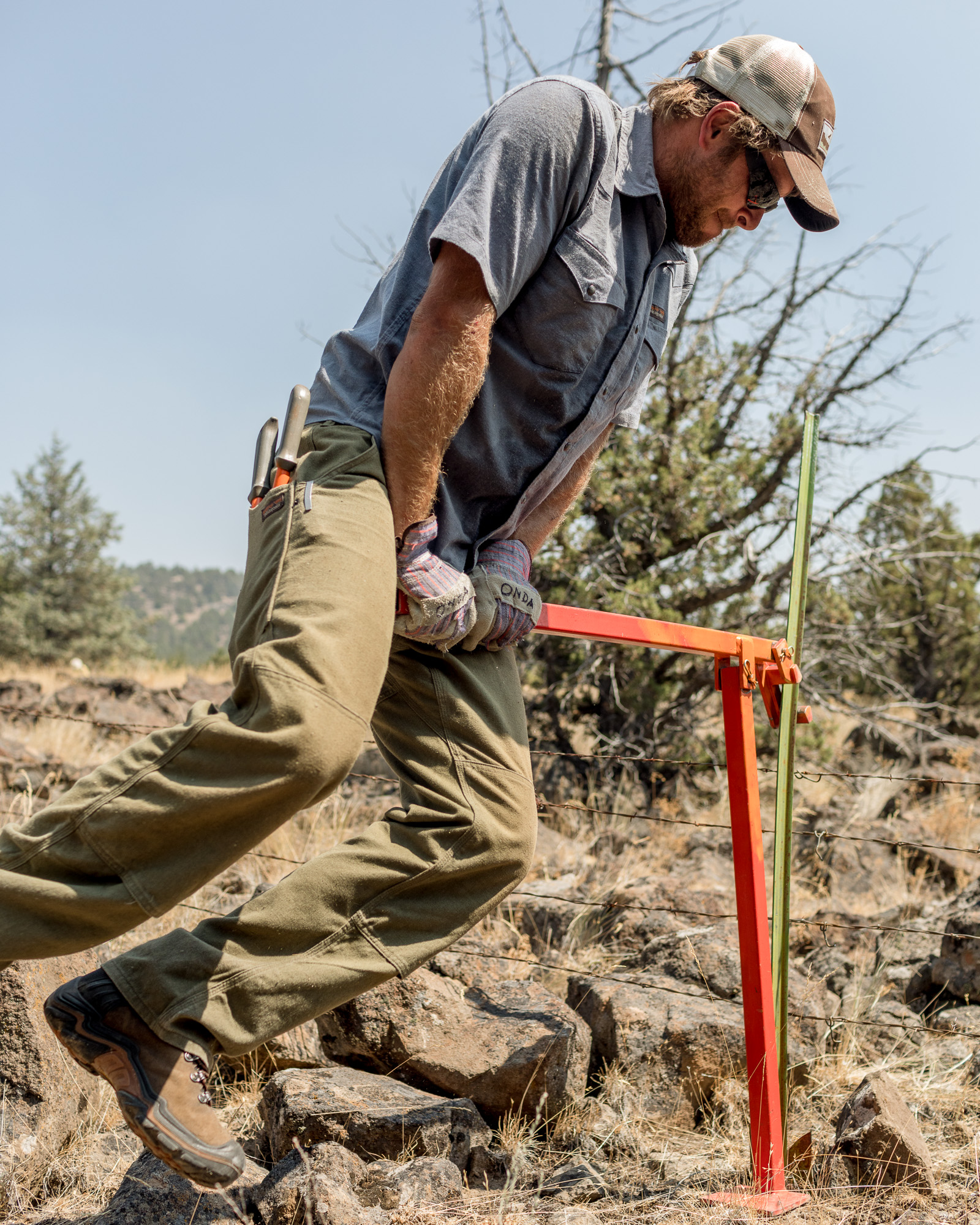 Helping Hands in the High Desert —Patagonia Workwear